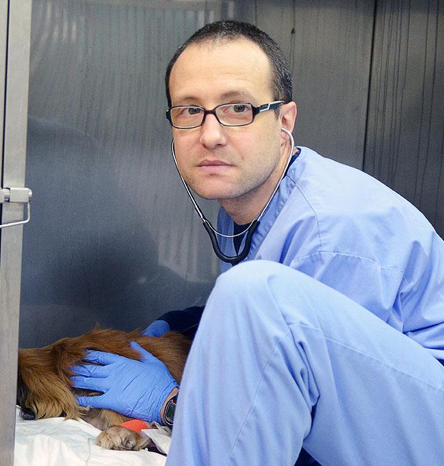 Dr. Dobromir Mitev
